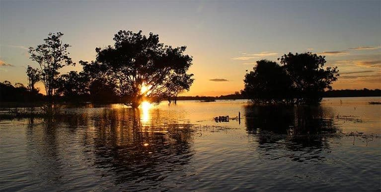 Aguas Tropicales de un paisaje de Manaos