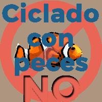 No es necesario maltratar a los peces para ciclar tu acuario. Hay otras alternativas más amigables con los peces
