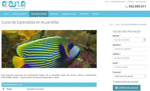 Formación online de especialista en Acuarismo que consta de 7 módulos