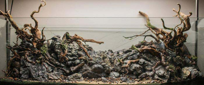 Hardscape es una base espectacular para el aquascaping