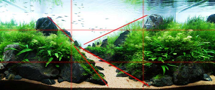 La perspectiva es otro gran aliado del paisajimo acuático