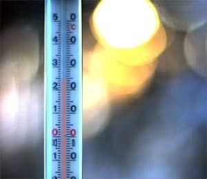 La temperatura acuario agua dulce de peces tropicales