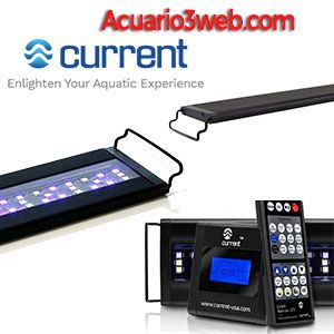 Current USA Orbit luz LED de acuario