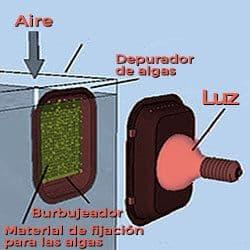 Filtro de agua pecera para Acuario Marino Algal Scrubber