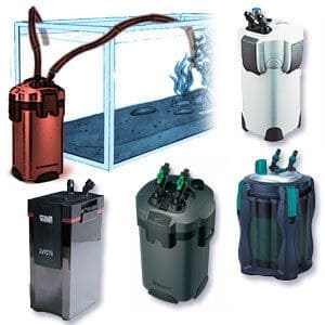 El mejor filtro para Acuarios: filtro canister acuario