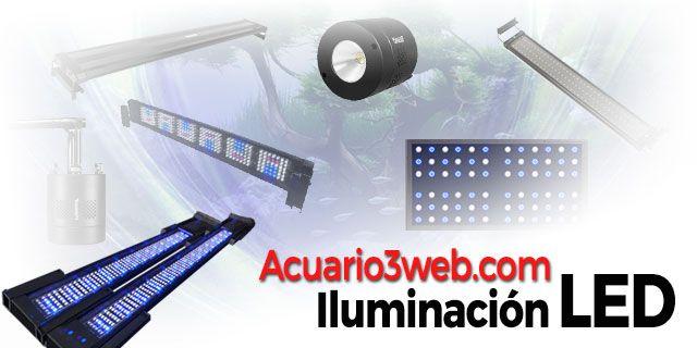 Iluminación LED de acuario y pecera