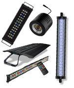 Descubre todo sobre la iluminación para peceras y acuarios. Las mejores luces para peceras y lámparas para acuarios al mejor precio