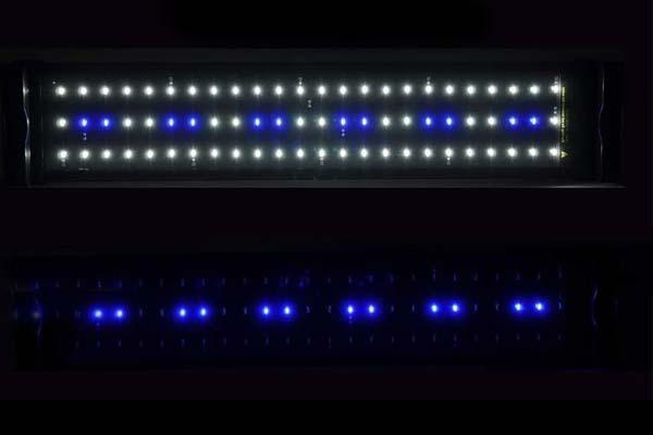 Dos modos de iluminación en la luz led para acuario Nicrew ClassicLED