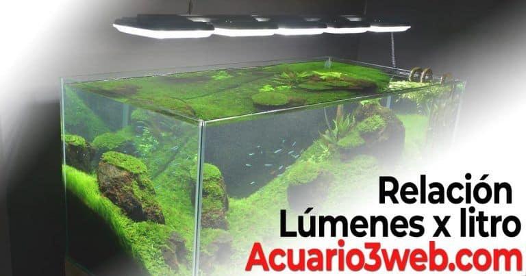 Relación lúmenes por litro de agua en el acuario plantado