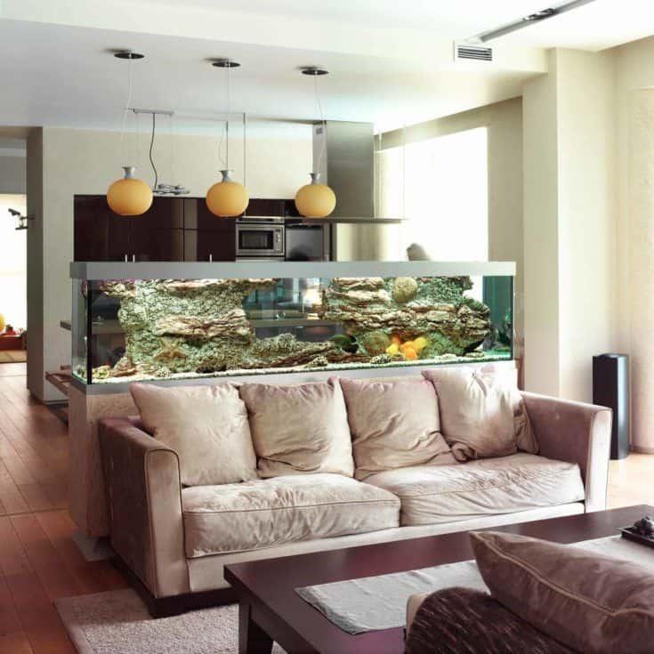 Hermoso acuario en la sala de estar.
