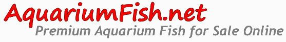 Logotipo de Aquariumfish.net