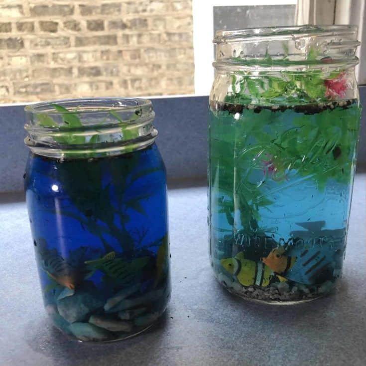 Dos frascos de acuario, uno con agua azul oscuro y el otro con agua azul claro.