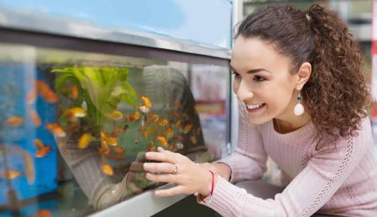 Chica morena positiva mirando peces tropicales en el acuario