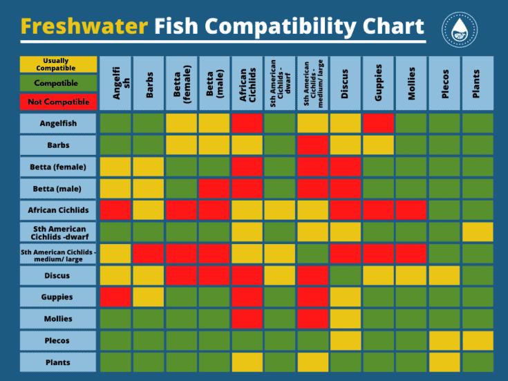 Tabla de compatibilidad de peces de agua dulce