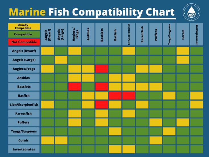Tabla de compatibilidad de peces marinos