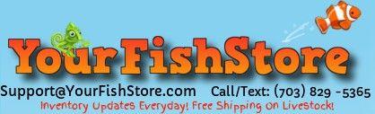 Logotipo de Yourfishstore.com